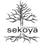 sekoya_logo_arbre