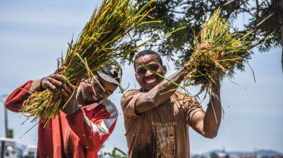 Madagascar: L'île aux sourires